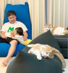 かまいたち山内息子と猫画像