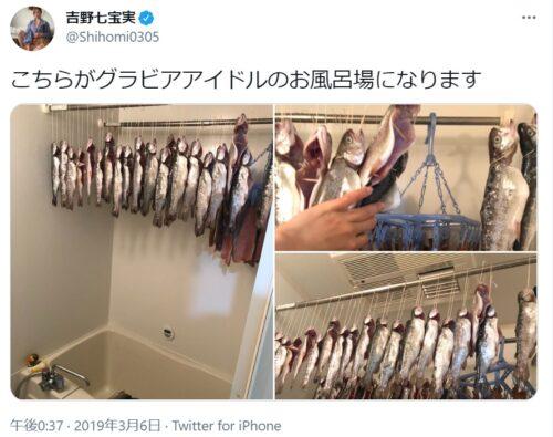 吉野七宝実しほみ干物アイドル画像
