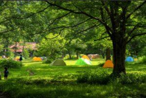 キャンプイメージ画像